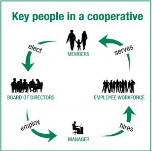 Key People In a Cooperative